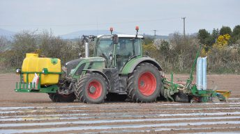 85% of Irish maize now estimated to be grown under plastic
