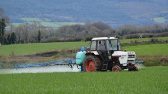 Calls for Irish people to support glyphosate ban campaign