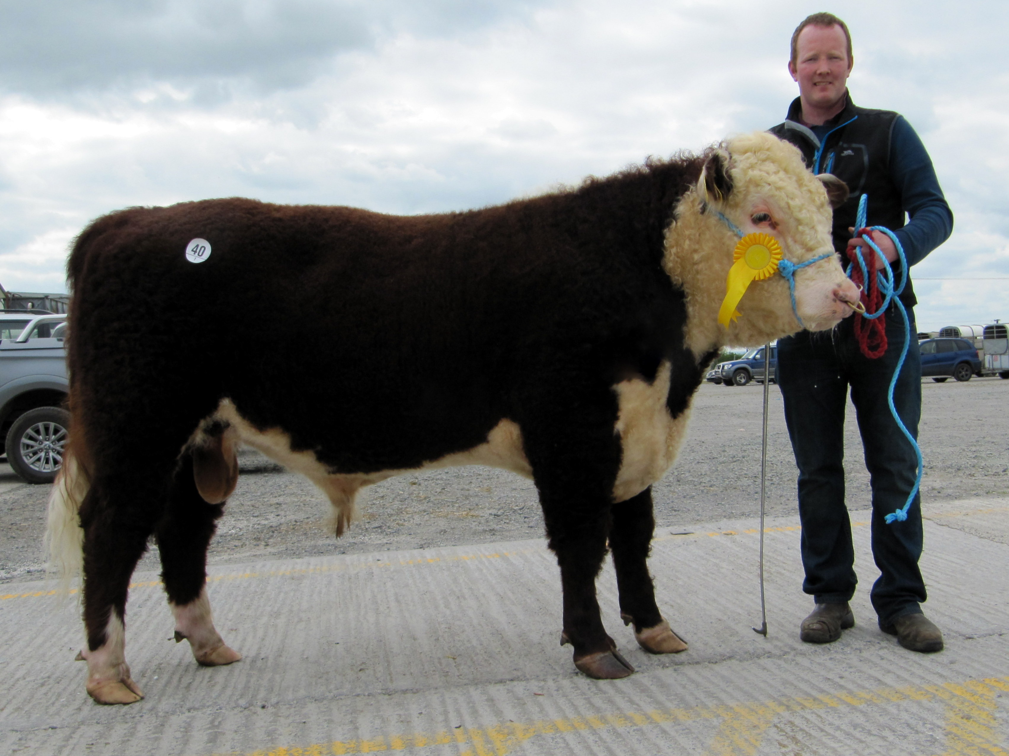 Clondrina 1171st sold at €3,200 with owner Declan Donnelly