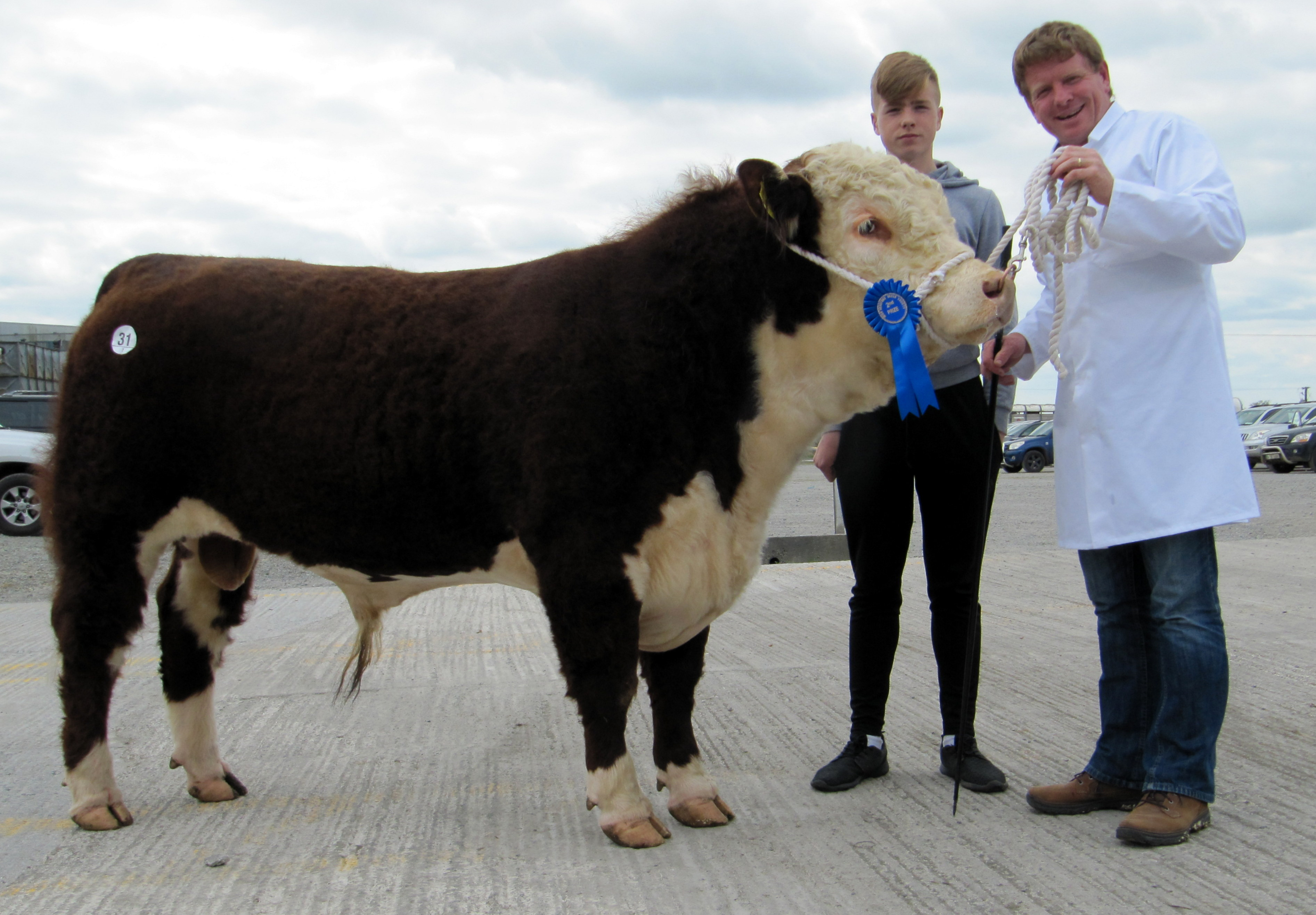 Hazel Grove Braxton, which sold for €3,000, with owners Keith and Dermot Whelton