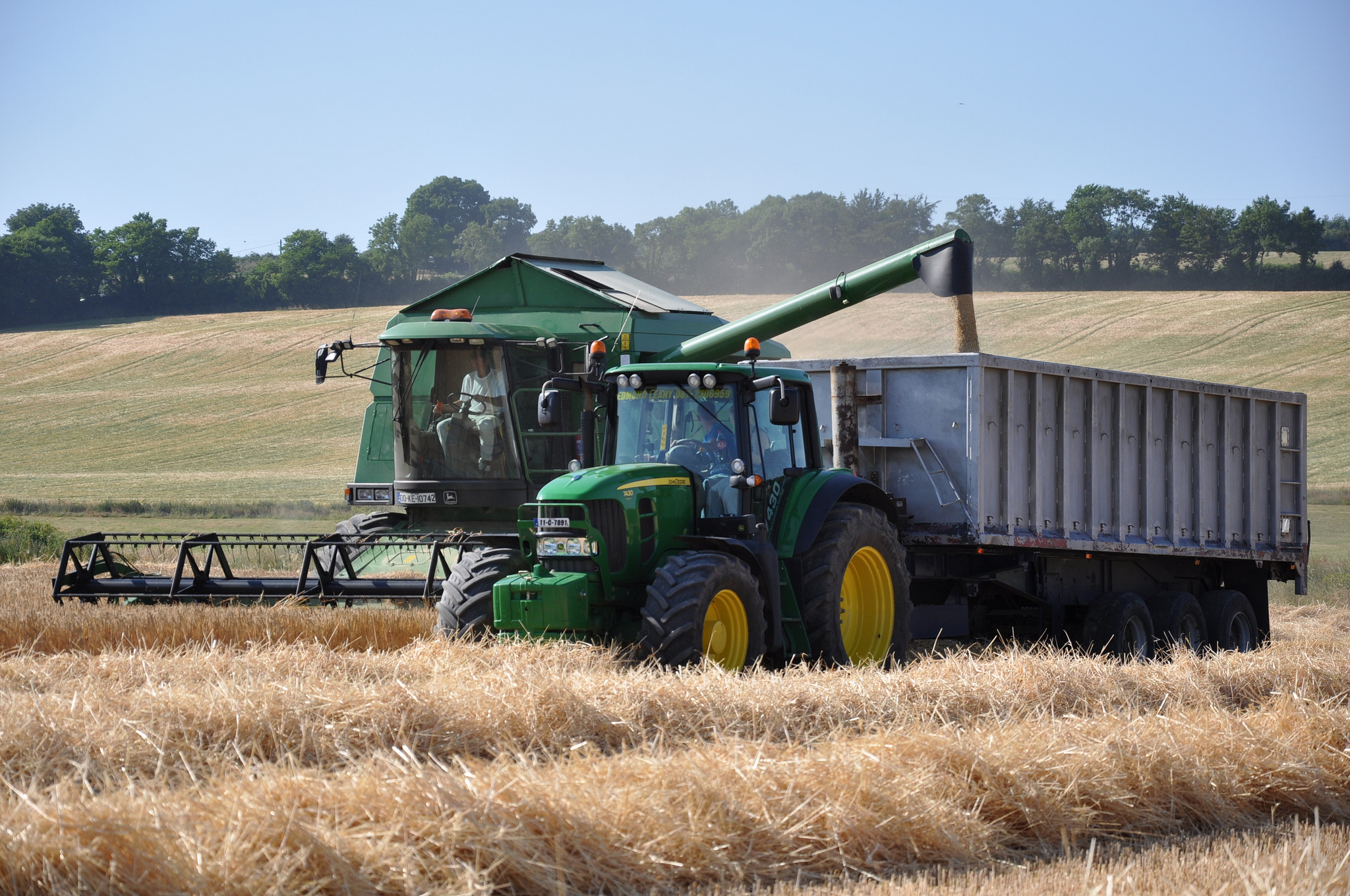 49% of tillage farmers see world grain prices as a threat - survey