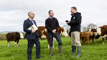Bord Bia launches new Quality Assurance Scheme
