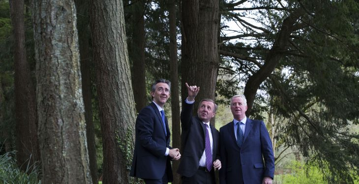 Coillte launches 'risk-free' private forestry initiative