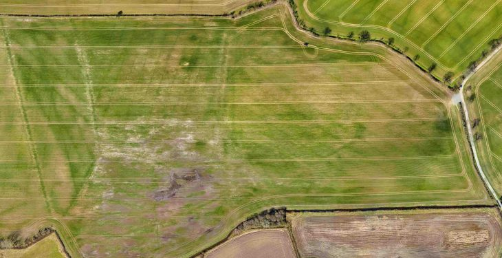 'Flying' with the times: Can drones play a practical role in farming?