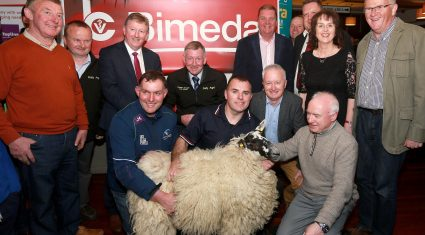 Major sheep shearing festivals to take place in the coming weeks