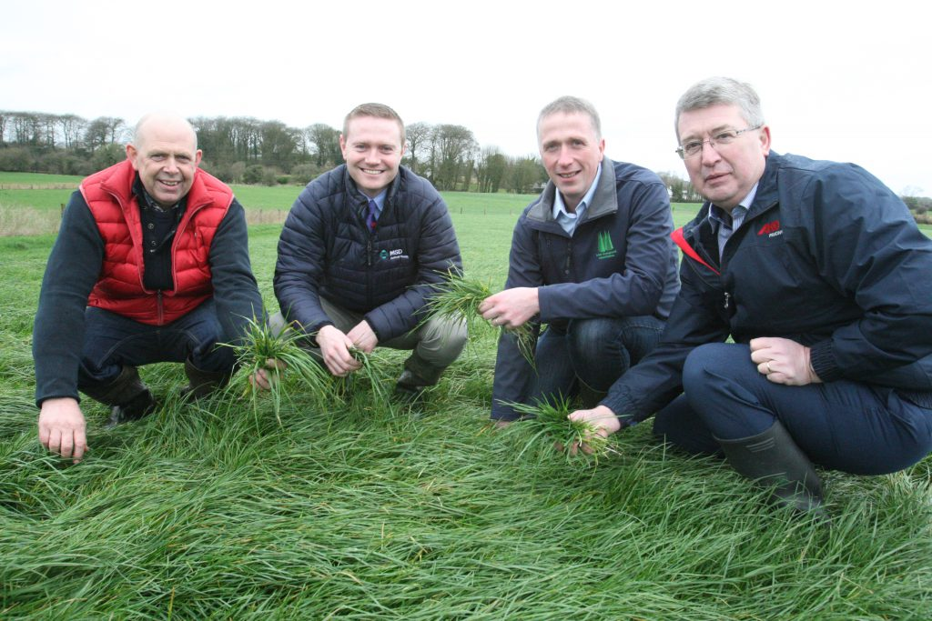 Photo l-r: John Bell host farmer, William Minchin MSD, Bernard Ging Irish Grassland Association President and Francis Mann Mullinahone Co-op.