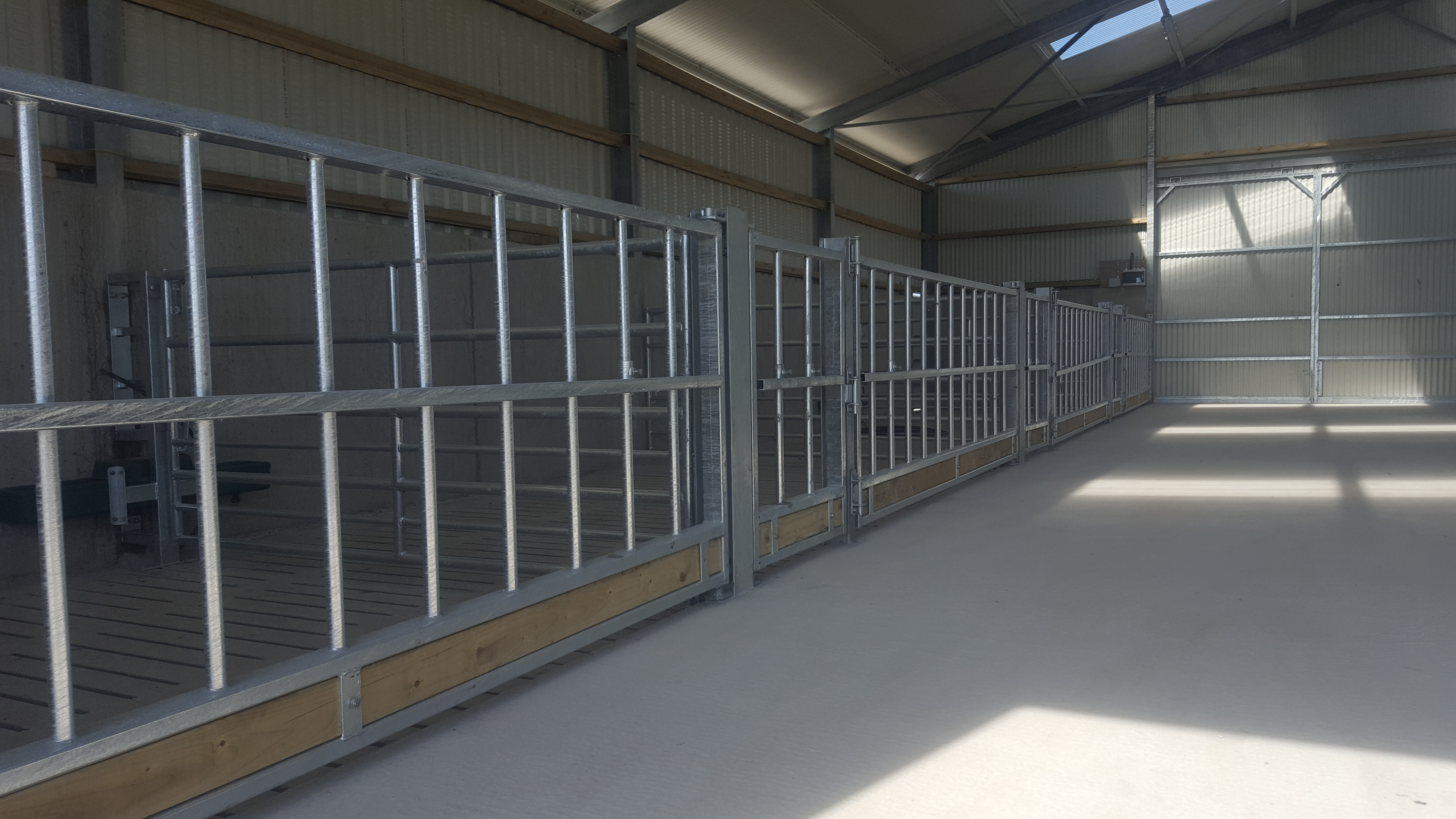 Pics A Sheep Shed Designed To Make Life Easier During