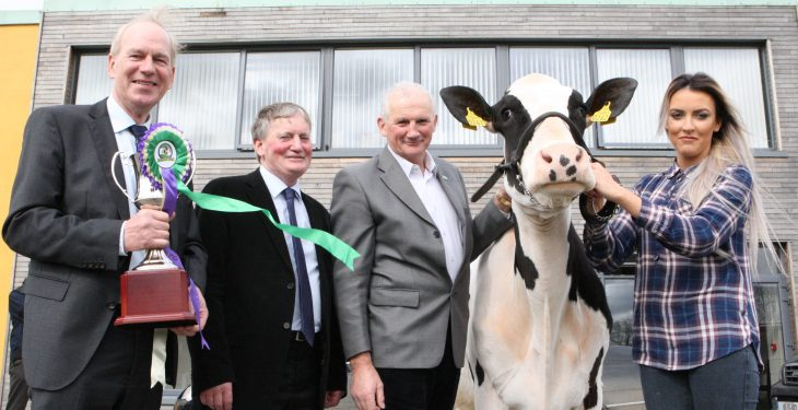 Record number of entries for 'first dairy show of the year'