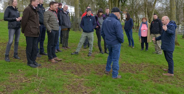 Grass breeding and short-rotation willow top the bill at AFBI forum