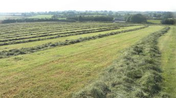 Does my silage ground need more fertiliser?