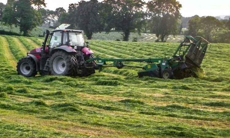 Cutting – a forgotten step in the silage production cycle