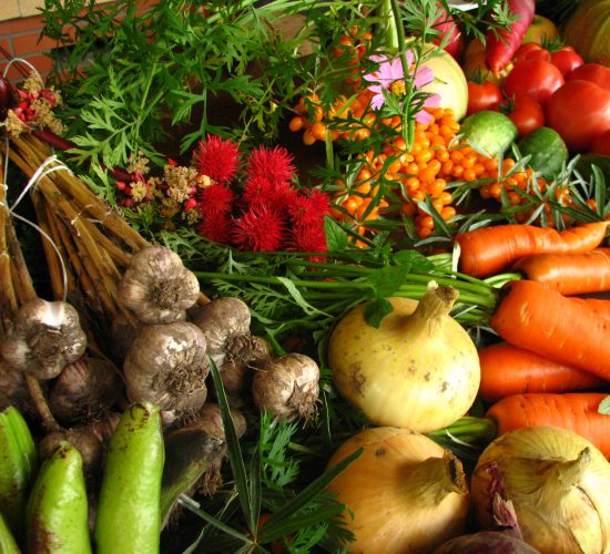 CAP: €256m to grow organic - what do we know so far?