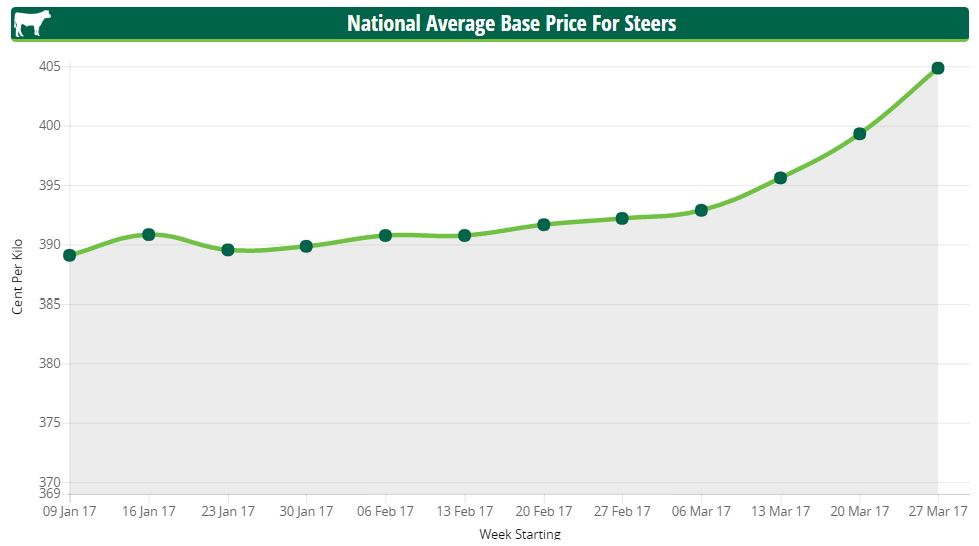 steer prices april 2