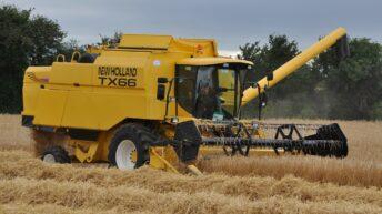 Irish Grain Growers hit out at Boortmalt-IFA deal