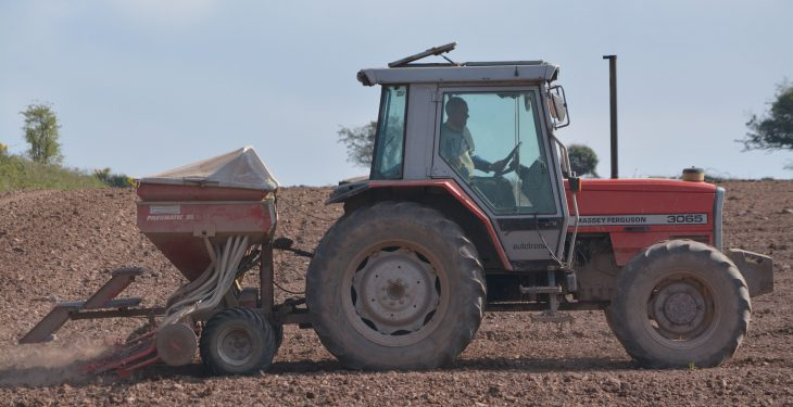 Good seed-bed preparation is proving its worth in the south-east
