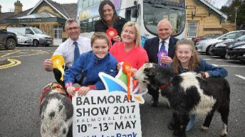 Four-day Balmoral Show aims to find favour with the punters