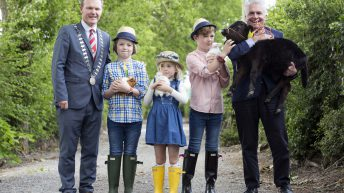 Cork gears up for 2017 Agricultural Show