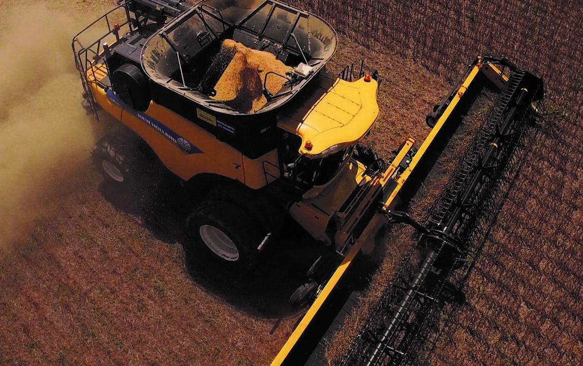 Grain price: Tariffs taking away from early-June price increase
