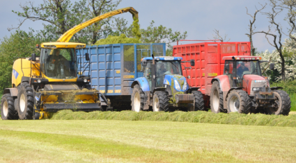 How much will it cost to get your (pit) silage cut?