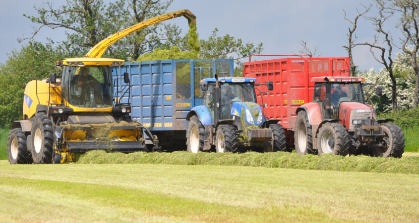 Cost Of Building A Silage Pit