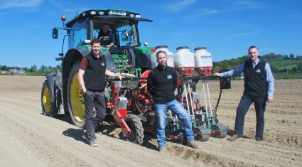 'Busy carrot planting season a success – for upcoming July harvest'