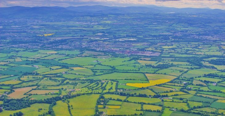 Family farm incomes drop by 9% to €24,000 in 2016