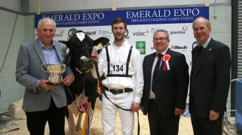 World-class animals on show at Emerald Expo