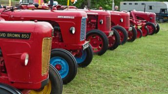 Kildare Show gets 'crafty' with home-brewed beer