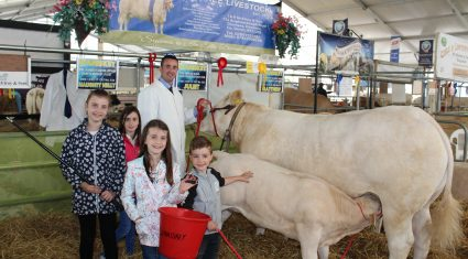 Breeders split on merits of four-day Balmoral Show