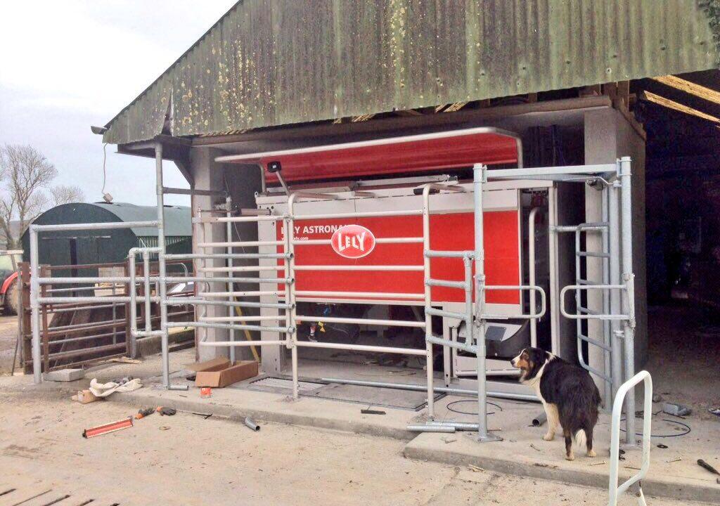 Is robotic milking the future for Irish dairy farming?