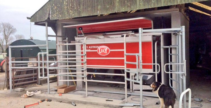 Is robotic milking the future for Irish dairy farming?