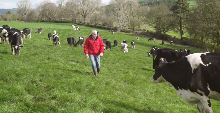Securing a sustainable future for Irish dairy farmers