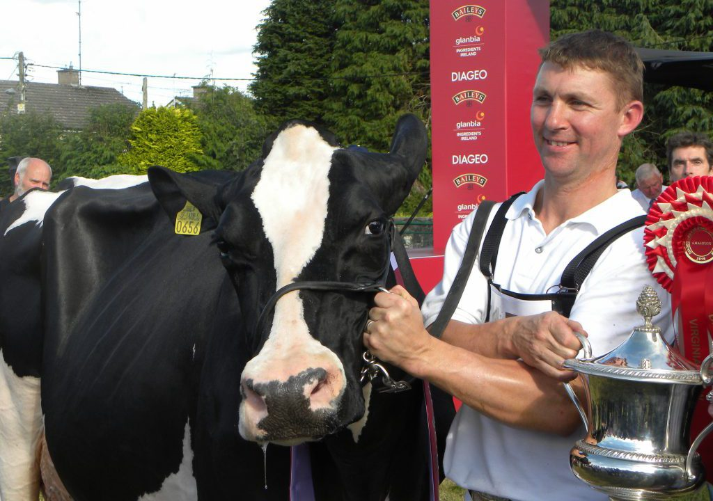 'Brainwash': Top dairy breeder hits out at 'one-sided' Teagasc message