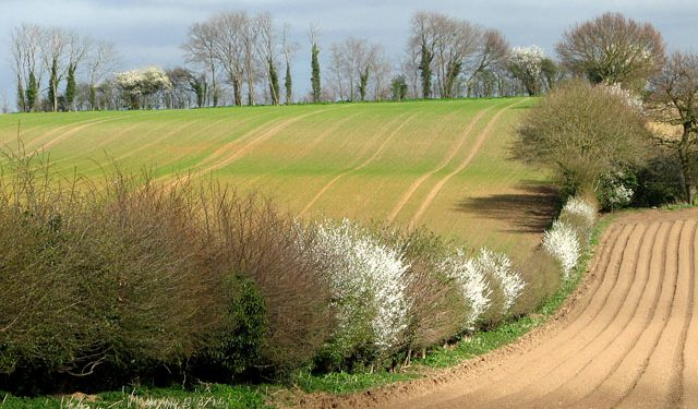 Could you be this year's Biodiversity Farmer of the Year?