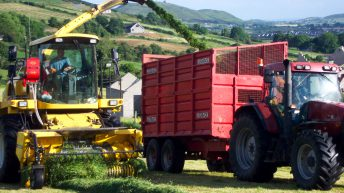 Young farmer snubs court date in favour of silage