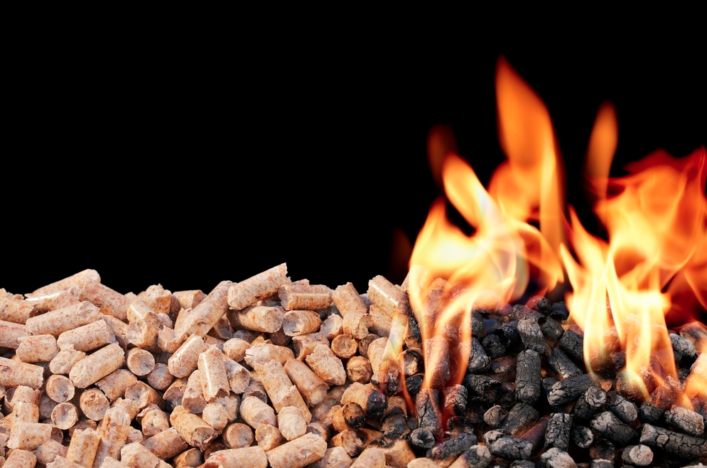 NI farmers cleared of wrongdoing after RHI audit