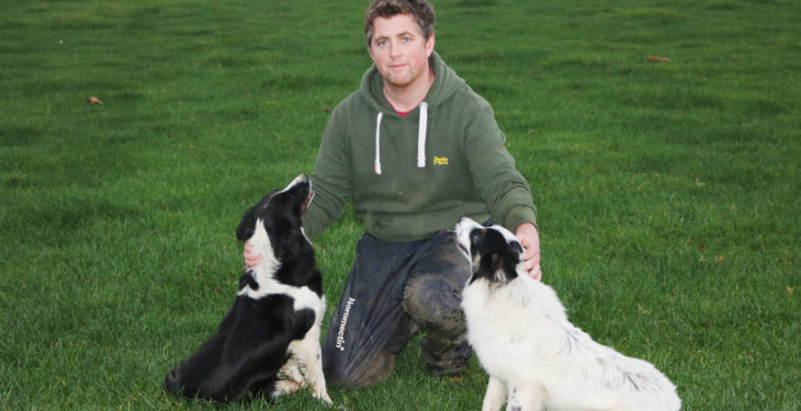 School's out for Kildare pedigree farmer