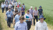 Diary dates: Keep up with the latest trial work at upcoming tillage events
