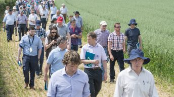 Recommended varieties, trial work and more at ISTA open day