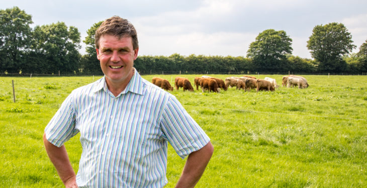 Pics: Maximising profitability from a suckler-to-beef herd