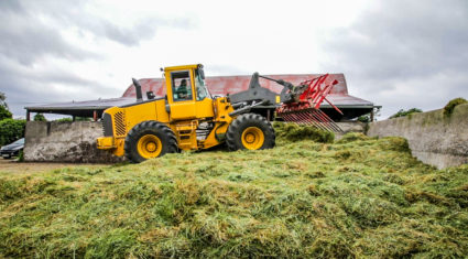 Looking to boost the yields of your silage crops?