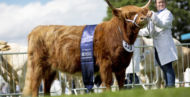Royal Highland Show gets underway today