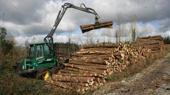 Doyle announces clinics for online forestry premium application