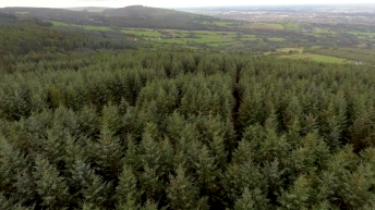 Fire safety drives appeals against Leitrim plantations