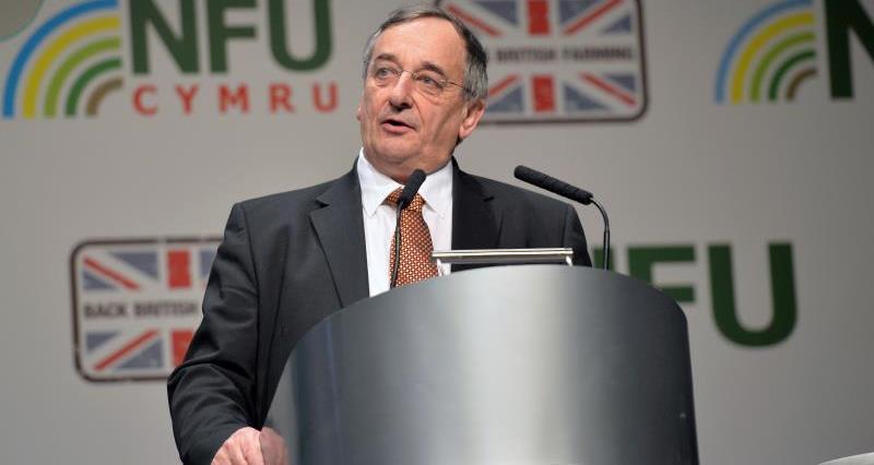 British farmers warn of 'dangerous' disappearance of EU labour
