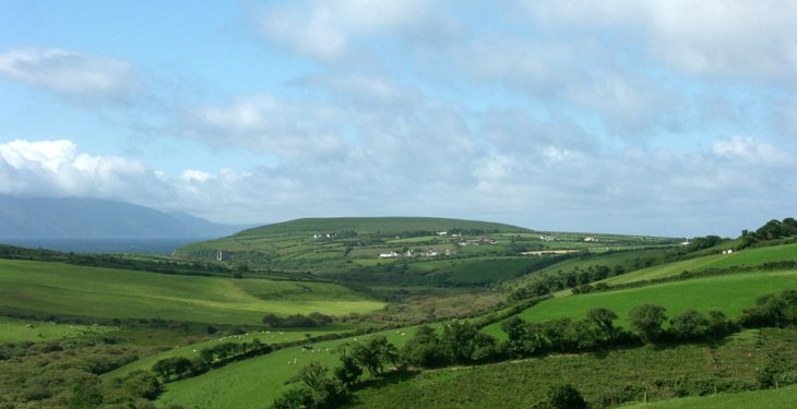 Land prices soar by almost 20% in Munster – but decline elsewhere