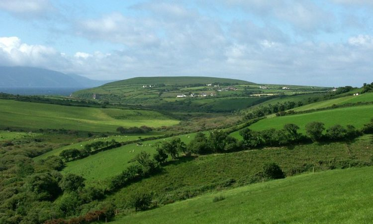Where is the most profitable farming region in Ireland?