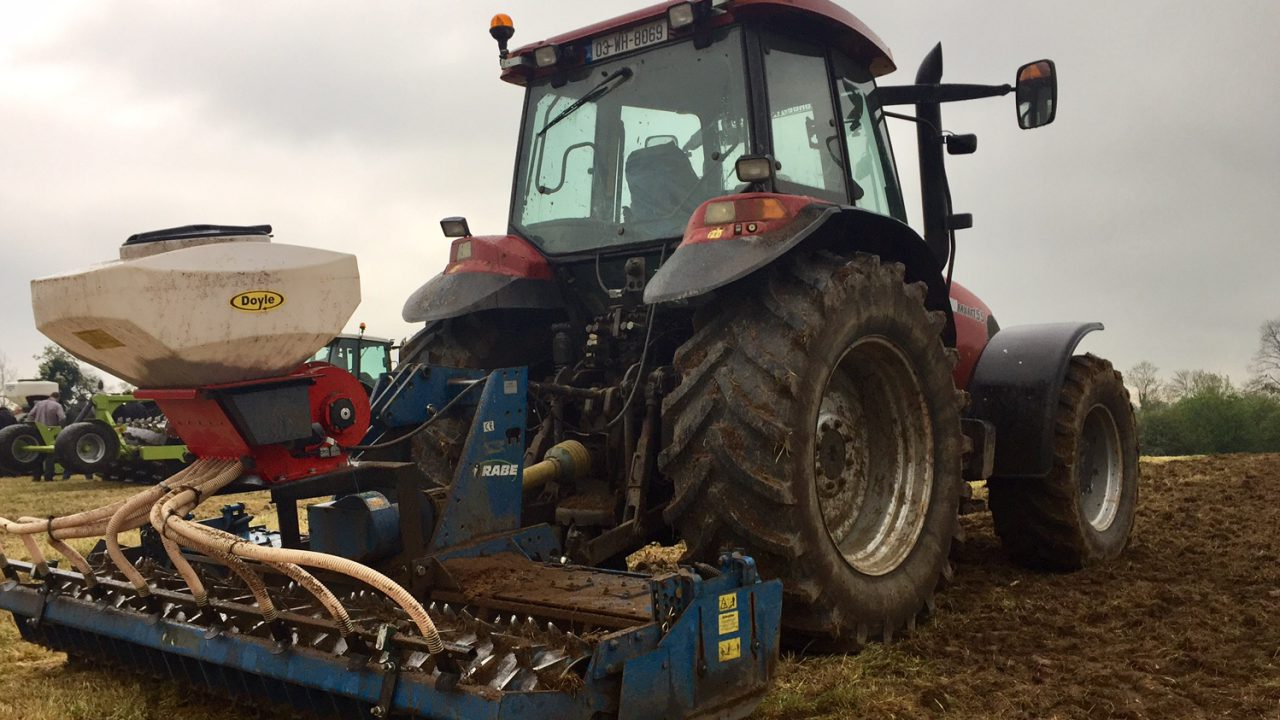 9 steps to success when reseeding this autumn