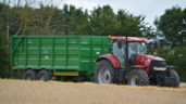 Area under cereals down 3.1% last summer