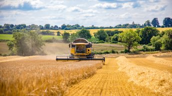 Few winter barley crops hit 4t/ac in the midlands and south
